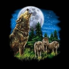 Wolf  T Shirts Clothing Wholesale - MSC Distributors