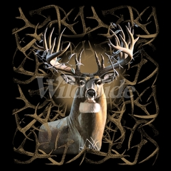 Wholesale Wildlife and Animal T Shirts and Hats, Wholesale Clothing and Apparel - MSC Distributors