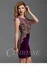 Clarisse Velvet Homecoming and Cocktail Dress 2919
