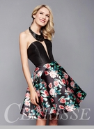 homecoming dresses and short gowns