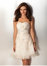 Ivory and Champagne Short Dress 17118