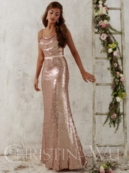 Christina Wu Occasions 22706 Cowl Neckline Evening Gown