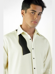 Fitted Microfiber Formal Shirts