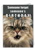 Humorous Birthday Card From NobleWorksInc.com - Angry Cat Forgot