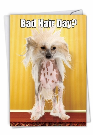 Humorous Birthday Card From NobleWorksInc.com - Bad Hair Day