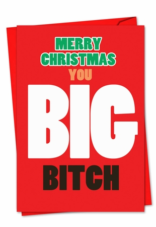 Hilarious Blank Christmas Card From NobleWorksInc.com - Big Bitch Christmas