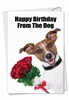 Funny Birthday Card From NobleWorksInc.com - Birthday From The Dog