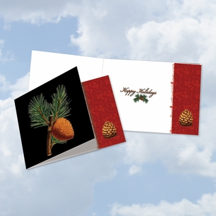 Stylish Happy Holidays Square-Top Card From NobleWorksInc.com - Black Pine
