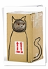Hysterical Birthday Card From NobleWorksInc.com - Box Cat