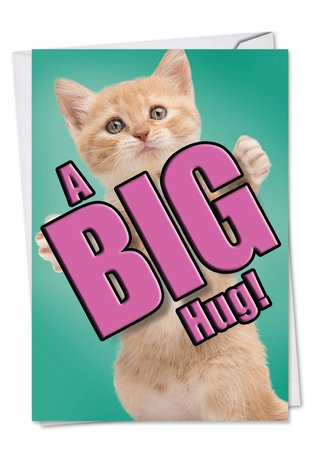 Artistic Miss You Card From NobleWorksInc.com - Cat A Big Hug