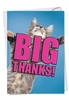 Artistic Thank You Card From NobleWorksInc.com - Cat Big Thanks