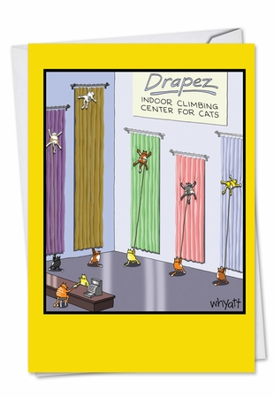 Humorous Congratulations Card From NobleWorksInc.com - Cat Climbing Center