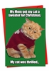 Funny Christmas Card From NobleWorksInc.com - Cat Sweater