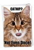 Hilarious Birthday Card From NobleWorksInc.com - Catnip Not Even Once