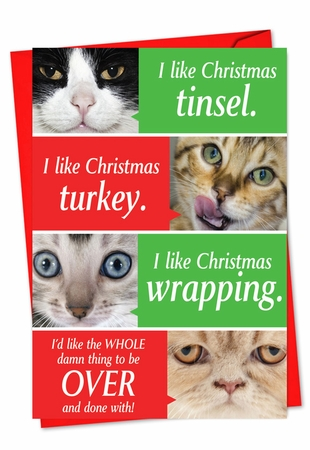 Funny Christmas Card From NobleWorksInc.com - Cats Getting Worried