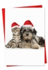 Beautiful Christmas Card From NobleWorksInc.com - Copy Cats
