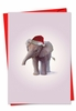Artistic Christmas Card From NobleWorksInc.com - Zoo Babies