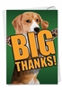 Artful Thank You Card From NobleWorksInc.com - Dog Big Thanks
