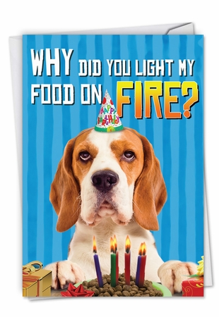 Humorous Birthday Pet Card From NobleWorksInc.com - Food On Fire
