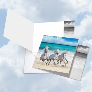 Artful Blank Square-Top Card From NobleWorksInc.com - Gallops and Greetings