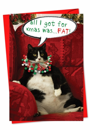 Humorous Christmas Card From NobleWorksInc.com - Got Fat