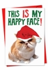 Hysterical Blank Christmas Card From NobleWorksInc.com - Happy Face