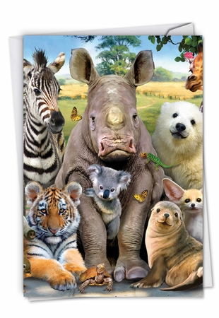 Stylish Get Well Card From NobleWorksInc.com - Here's Looking At Zoo