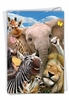 Creative Birthday Card From NobleWorksInc.com - Here's Looking At Zoo