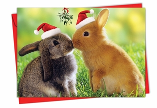 Beautiful Christmas Card From NobleWorksInc.com - Holiday Animal Smackers