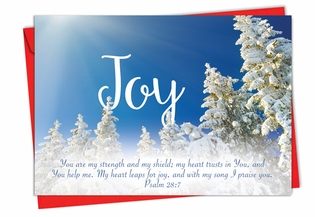 Beautiful Christmas Card From NobleWorksInc.com - Holiday Devotions
