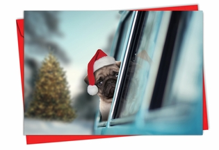 Beautiful Christmas Card From NobleWorksInc.com - Holiday Doggie in the Window