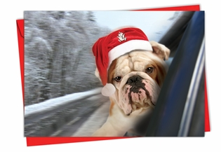 Artful Christmas Card From NobleWorksInc.com - Holiday Doggie in the Window