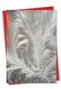 Beautiful Christmas Card From NobleWorksInc.com - Ice Feathers
