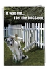 Funny Birthday Card From NobleWorksInc.com - Let Dogs Out