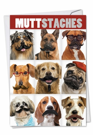 Hilarious Birthday Card From NobleWorksInc.com - Muttstaches