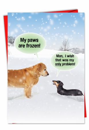 Humorous Christmas Card From NobleWorksInc.com - My Paws Are Frozen