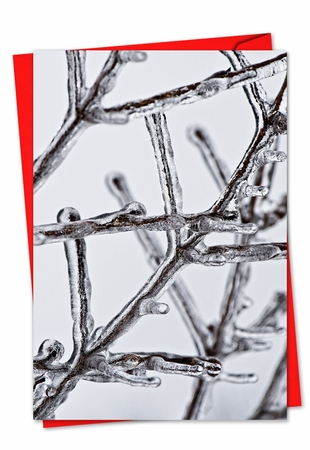 Artful Christmas Card From NobleWorksInc.com - Nature On Ice