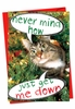 Humorous Christmas Card From NobleWorksInc.com - Never Mind How, Just Get