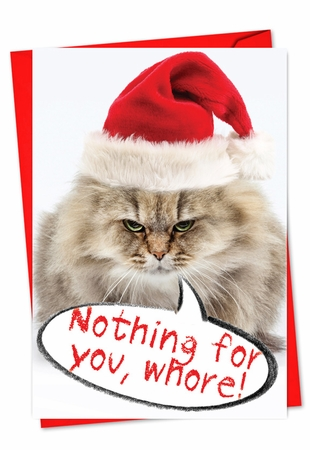 Humorous Christmas Card From NobleWorksInc.com - Nothing For You Whore