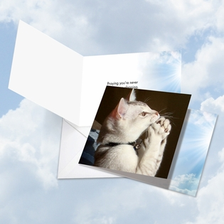 Hilarious All Occasions Square-Top Card From NobleWorksInc.com - Paws and Prayers Clapper