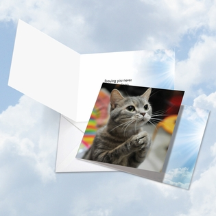 Humorous All Occasions Square-Top Card From NobleWorksInc.com - Paws and Prayers Lego