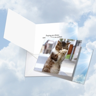 Hysterical All Occasions Square-Top Card From NobleWorksInc.com - Paws and Prayers Parked