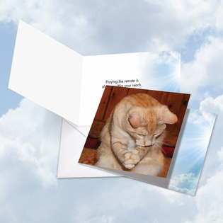 Hilarious All Occasions Square-Top Card From NobleWorksInc.com - Paws and Prayers Remote