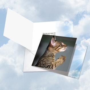 Hilarious All Occasions Square-Top Card From NobleWorksInc.com - Paws and Prayers Reply All