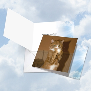 Humorous All Occasions Square-Top Card From NobleWorksInc.com - Paws and Prayers Sneeze