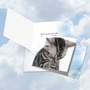 Funny All Occasions Square-Top Card From NobleWorksInc.com - Paws and Prayers Traffic Jam