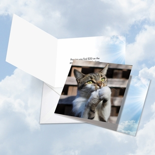 Funny All Occasions Square-Top Card From NobleWorksInc.com - Paws and Prayers Twenty Bucks
