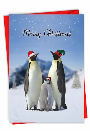 Hysterical Merry Christmas Card From NobleWorksInc.com - Penguins and Greetings Christmas
