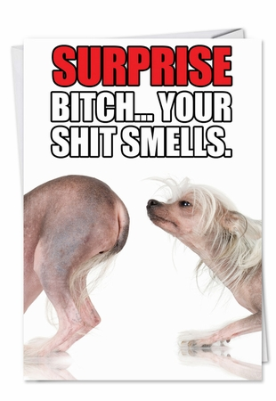 Hysterical Birthday Card From NobleWorksInc.com - Shit Smells
