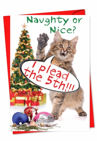 Funny Christmas Card From NobleWorksInc.com - Take the 5th